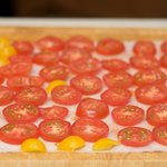 Line the sliced tomatoes on several clean paper towels,