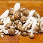 Prepare the mushrooms.