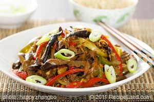 Sichuan Stir-Fry Eggplant with Bell Peppers