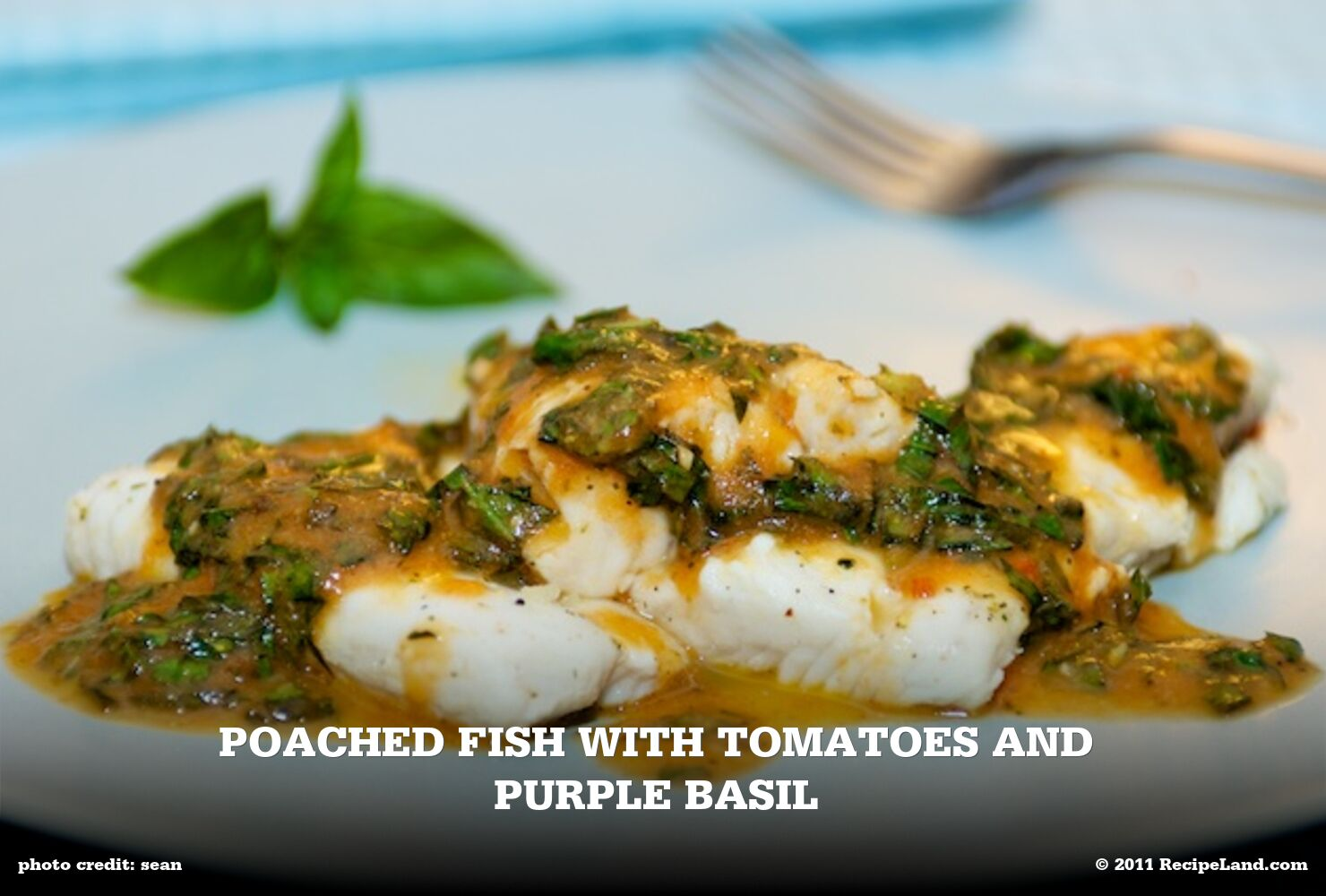 Poached Fish with Tomatoes And Purple Basil