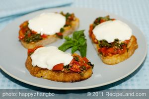 Tomato and Basil Bruschetta with Fresh Mozzarella Sandwich