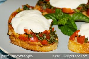 Tomato and Basil Bruschetta with Fresh Mozzarella Sandwich