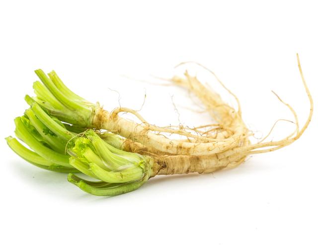 coriander root