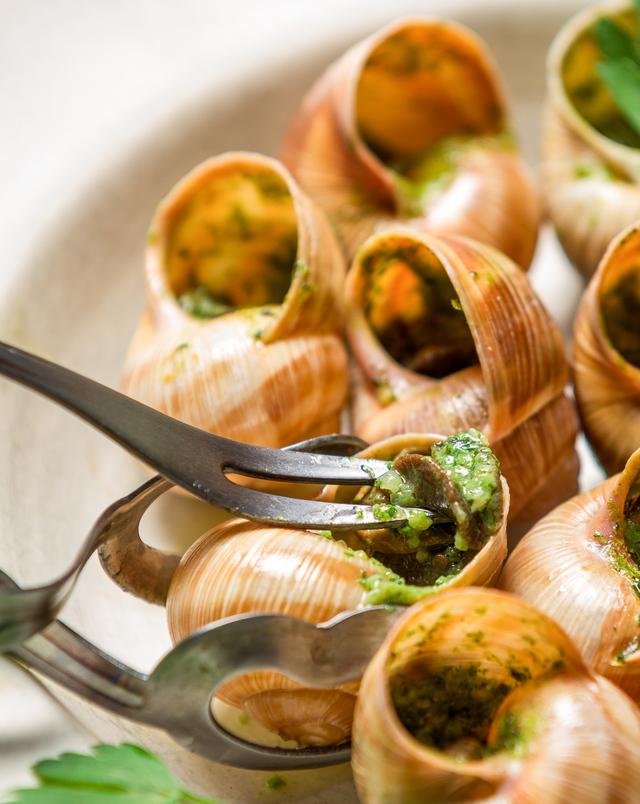 snails - escargot