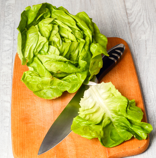 head of Boston lettuce and leaf