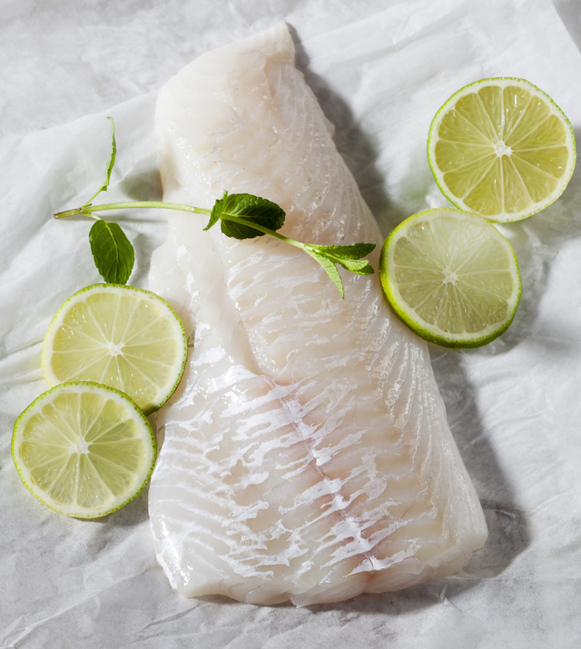 haddock fish fillet
