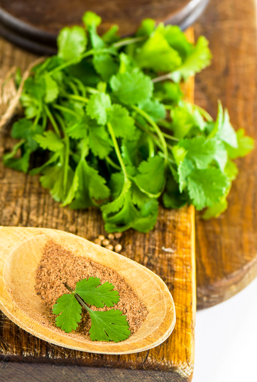 Cilantro leaves and ground coriander on a wooden background