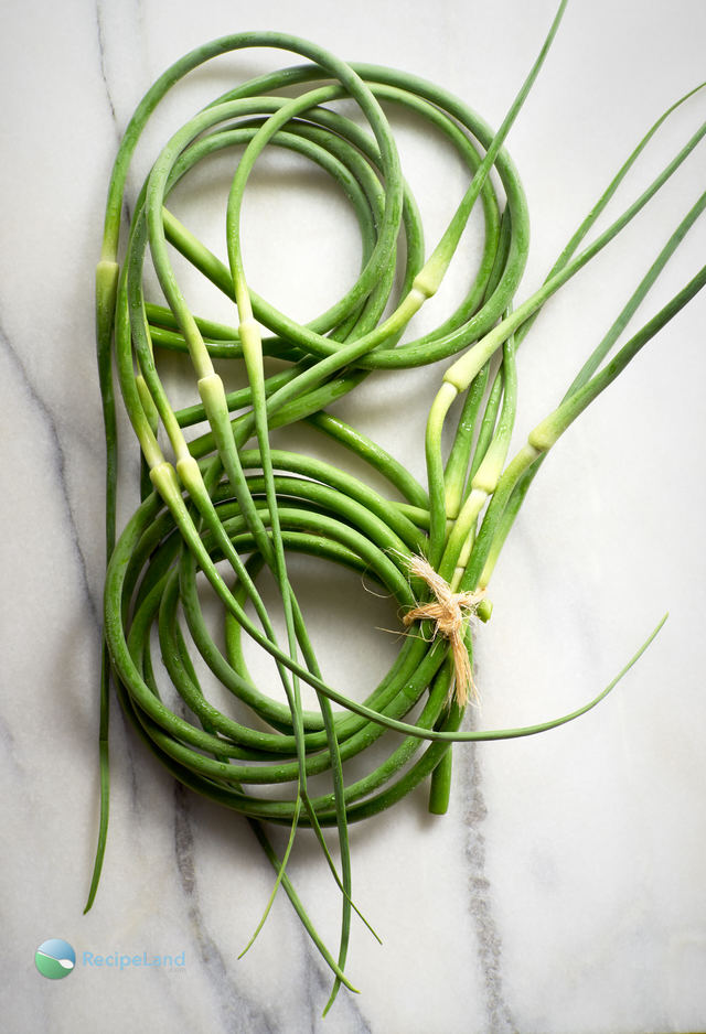Garlic scapes infinity