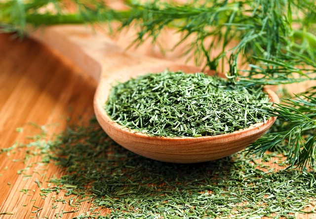 Dried and fresh dill weed