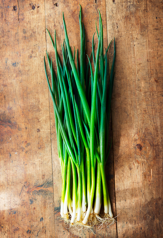 bunch of spring onions, scallions
