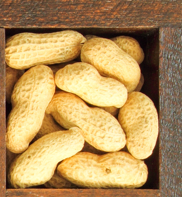 unsalted peanuts in their shells