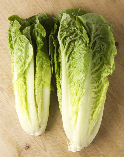 head and heart of romaine lettuce