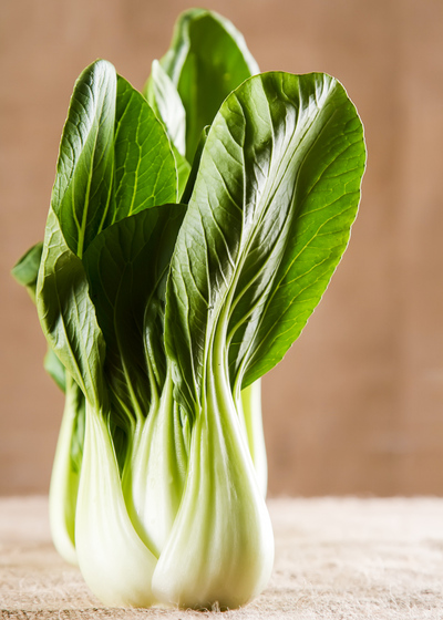 Head of bok choy