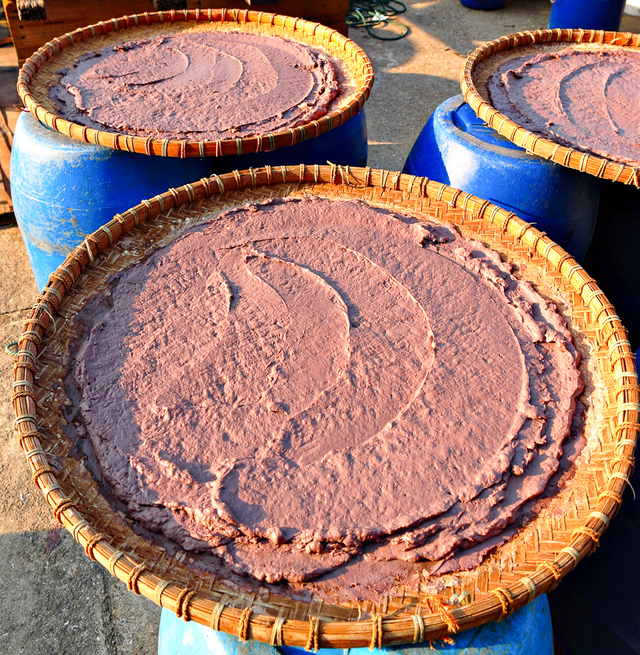 Chinese shrimp paste drying in sun